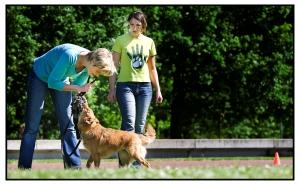 GHSpijkenisse Spel met hond